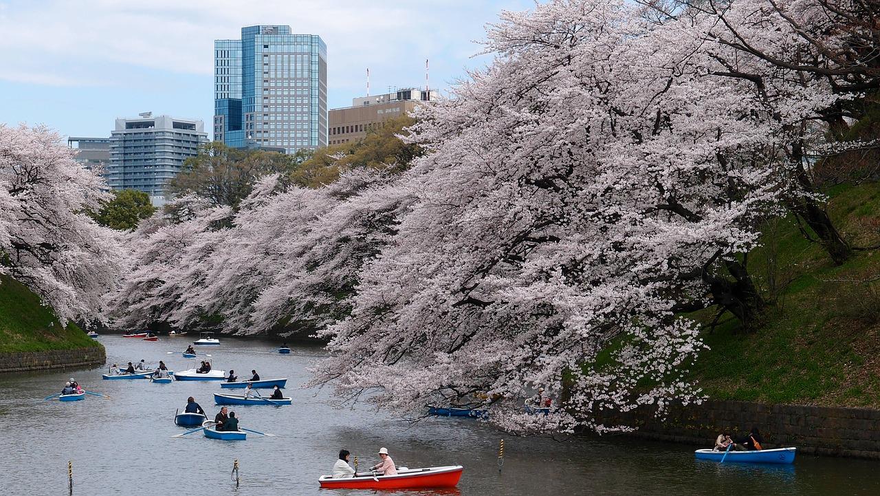 Leuk steden: Tokyo